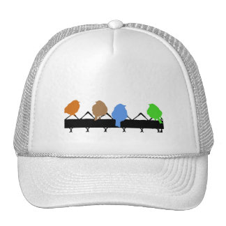 Pájaros de un color gorras de camionero