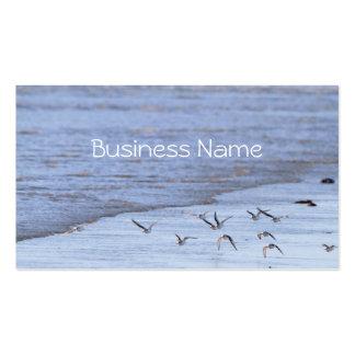 Pájaros de vuelo a lo largo de la tarjeta de visit tarjetas de visita