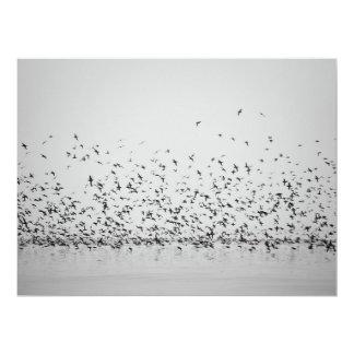 Pájaros de vuelo de los trabajos de exhibición de invitación 16,5 x 22,2 cm