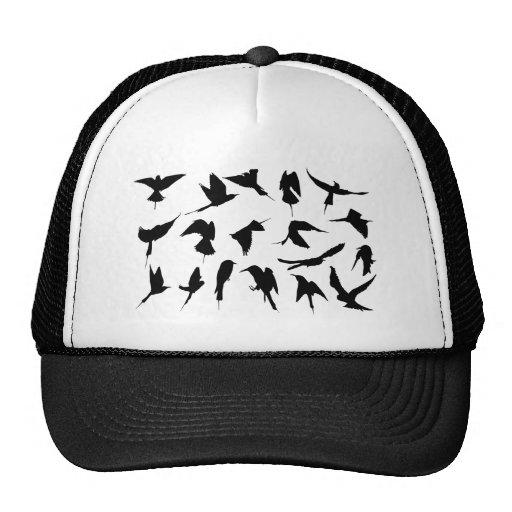 Pájaros de vuelo gorra