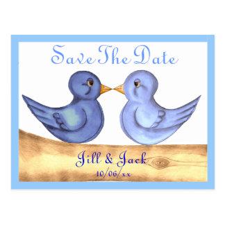 Pájaros del amor (azules) postales