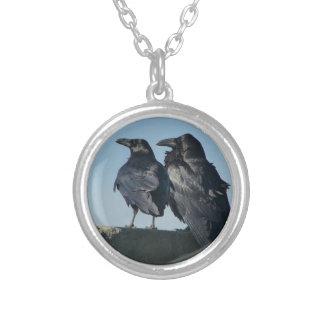 Pájaros del amor collar plateado