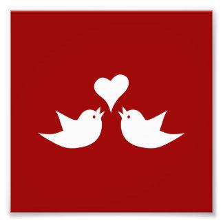 Pájaros del amor con el corazón que casan cojinete