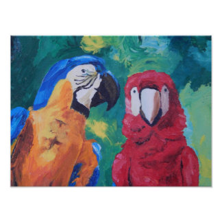 Pájaros del amor del loro póster