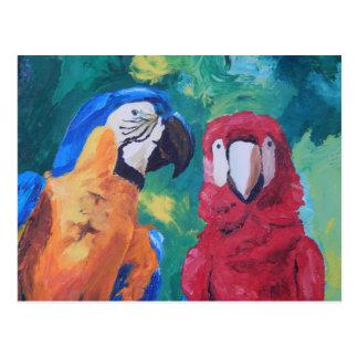 Pájaros del amor del loro