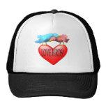 Pájaros del amor gorras de camionero