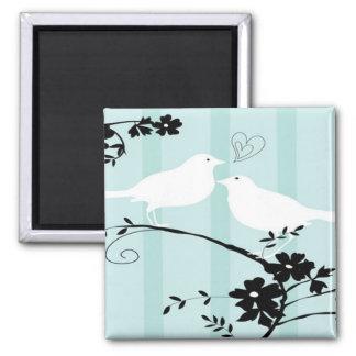 Pájaros del amor imán cuadrado