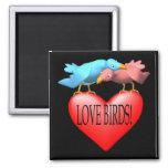 Pájaros del amor imán de frigorífico