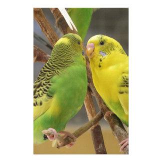 Pájaros del amor  papeleria