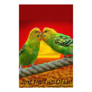 Pájaros del amor  papeleria de diseño