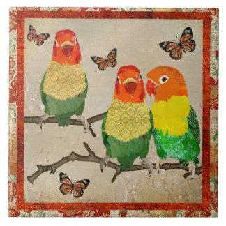 Pájaros del amor y teja ambarina de las mariposas