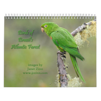 Pájaros del calendario atlántico 2015 del bosque