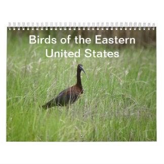 Pájaros del calendario de Estados Unidos del este