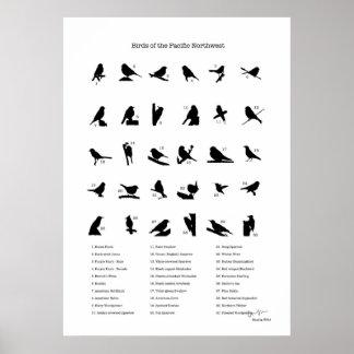 Pájaros del del noroeste (con nombres) póster