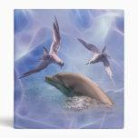 Pájaros del delfín y del salto