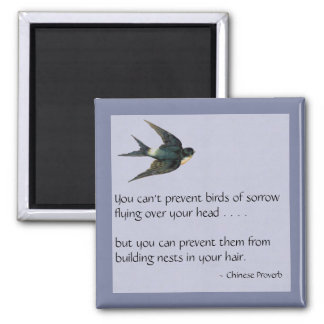 Pájaros del dolor - imán