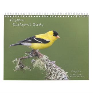 Pájaros del este del patio trasero calendarios