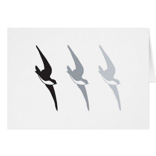 Pájaros del gris felicitación