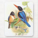 Pájaros del martín pescador de Goulds Alfombrilla De Ratones
