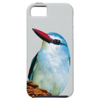 Pájaros del martín pescador del arbolado iPhone 5 Case-Mate coberturas