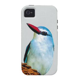 Pájaros del martín pescador del arbolado iPhone 4/4S fundas