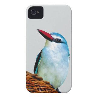 Pájaros del martín pescador del arbolado iPhone 4 Case-Mate cárcasas