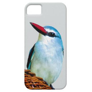 Pájaros del martín pescador del arbolado iPhone 5 Case-Mate protector