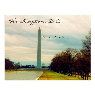 pájaros del monumento de Washington Postal