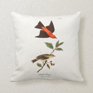 Pájaros del pájaro cantante del pájaro del Tanager Cojin