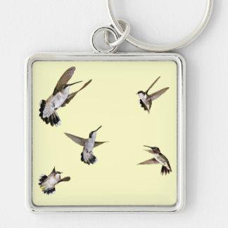 Pájaros del tarareo llaveros