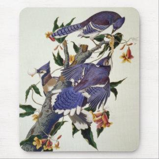 Pájaros del vintage alfombrillas de raton