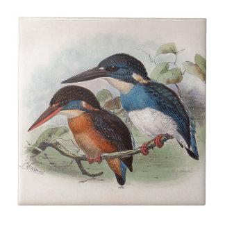 Pájaros del vintage azulejo cuadrado pequeño
