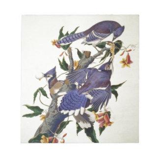 Pájaros del vintage bloc de papel