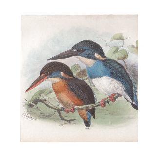Pájaros del vintage bloc de notas