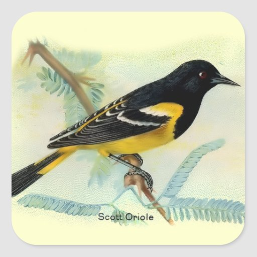Pájaros del vintage colcomanias cuadradases