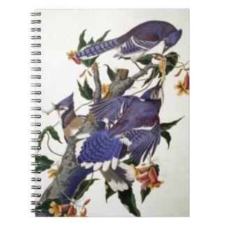 Pájaros del vintage libretas espirales