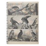 Pájaros del vintage del cuaderno del espacio en bl