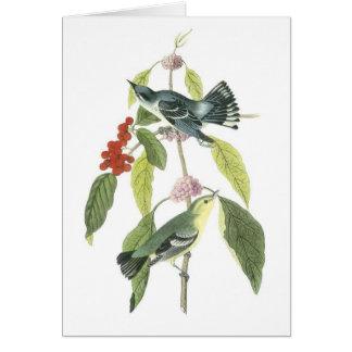 Pájaros del vintage en un notecard de la rama…