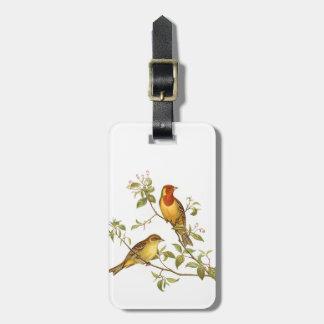 Pájaros del vintage etiquetas para equipaje