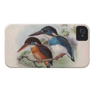 Pájaros del vintage iPhone 4 funda