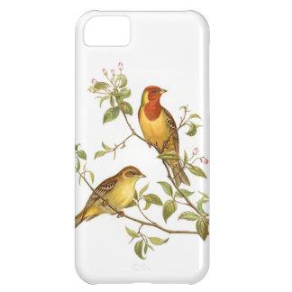 Pájaros del vintage funda para iPhone 5C