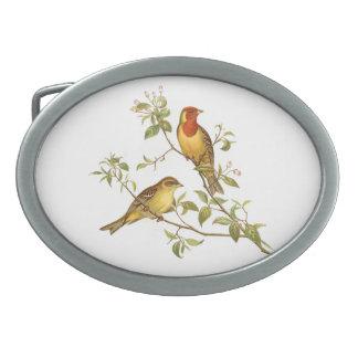 Pájaros del vintage hebilla de cinturón oval