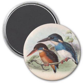 Pájaros del vintage imán redondo 7 cm