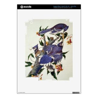 Pájaros del vintage iPad 3 pegatina skin
