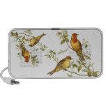 Pájaros del vintage laptop altavoces