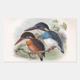 Pájaros del vintage pegatina rectangular