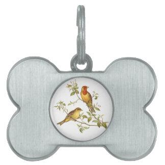 Pájaros del vintage placas de nombre de mascota