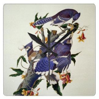 Pájaros del vintage reloj cuadrado