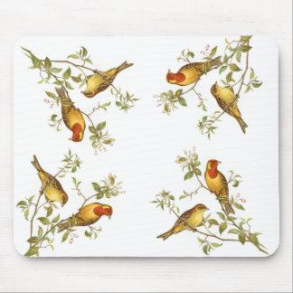 Pájaros del vintage tapete de ratón