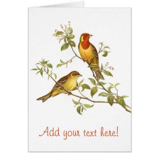 Pájaros del vintage tarjeta pequeña